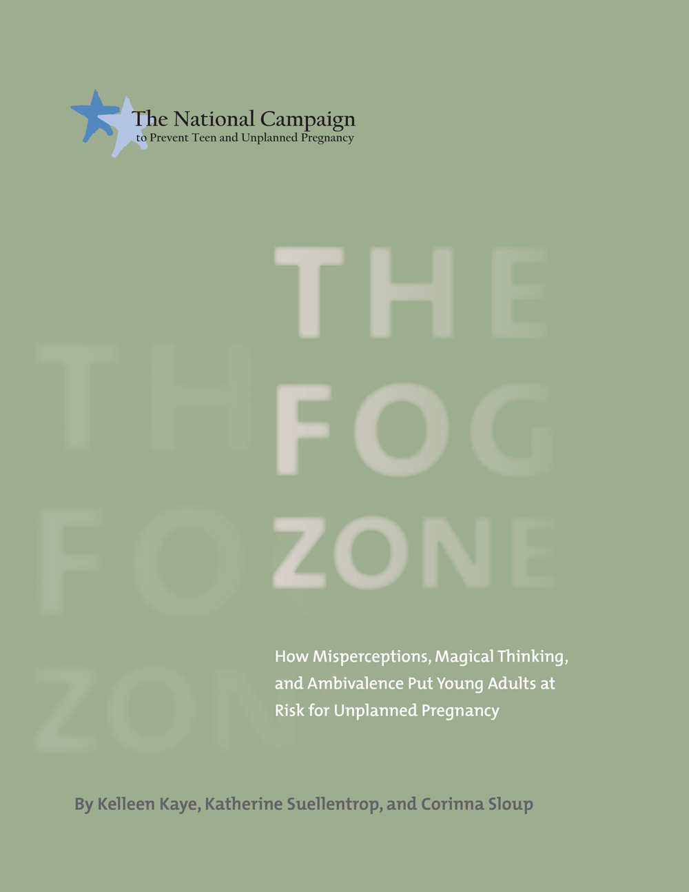 The Fog Zone: How Misperceptions, Magical Thinking, and Ambivalence Put Young Adults at Risk for Unplanned Pregnancy—Full Report