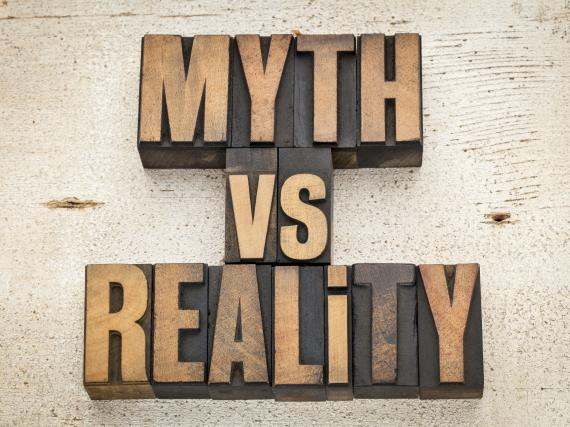 "Wooden letters that say, ""Myth vs reality"""
