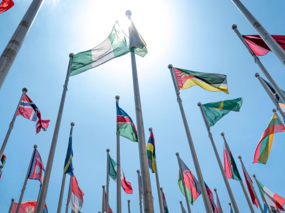 The flags of many nations on flagpoles outside in the sun.