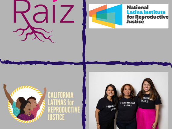 Logos and photos from four Latinx groups fighting for reproductive health.