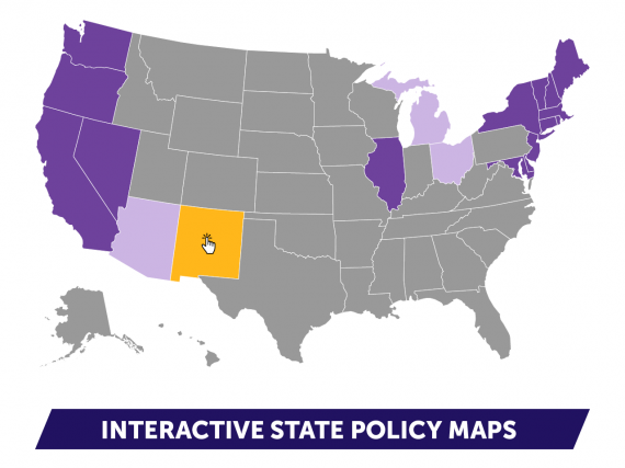A map of the United States with several states selected in purple or yellow as an example of how the interactive maps could look.