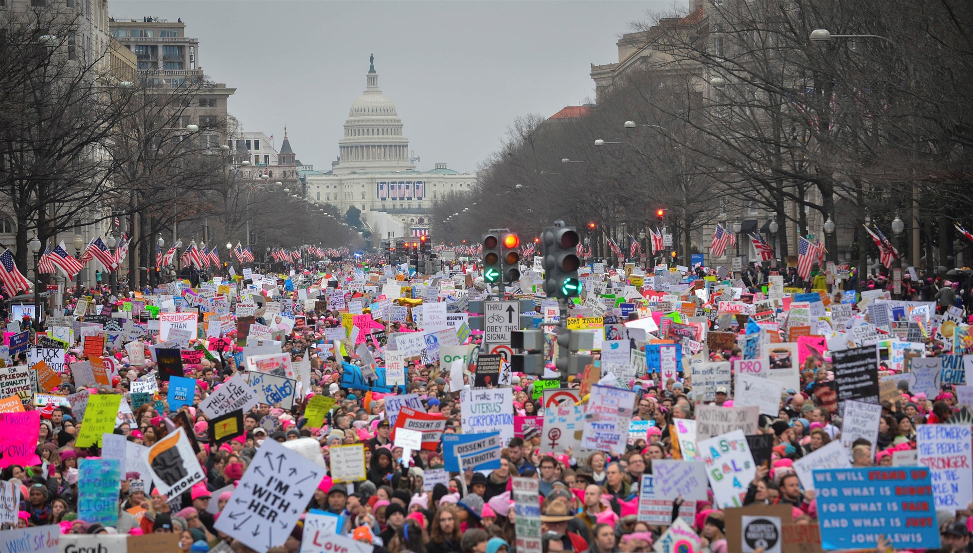 A photo from the Women's March, Washington, DC, in 2017.